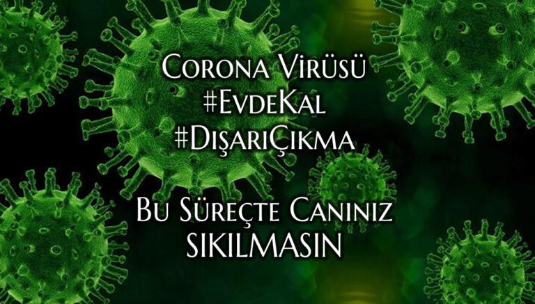 Corona Virüs (Covid-19)